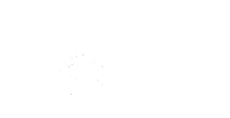 World Skin Cancer Foundation Logo
